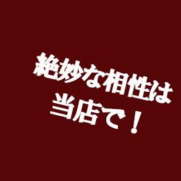 味噌カツ_midashi